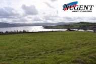 Land at Carrig, Blessington, Co. Wicklow